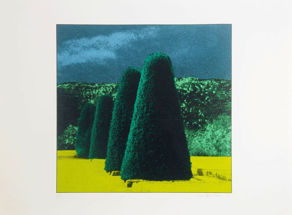 Ivor Abrahams, 'Garden Suite No 1' (1970, silk screen and flock fibre)