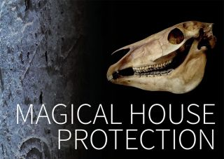 Magical House Protection: The Use of Bellarmines as Witch-bottles