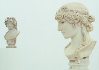 Antinous: the face of the Antique