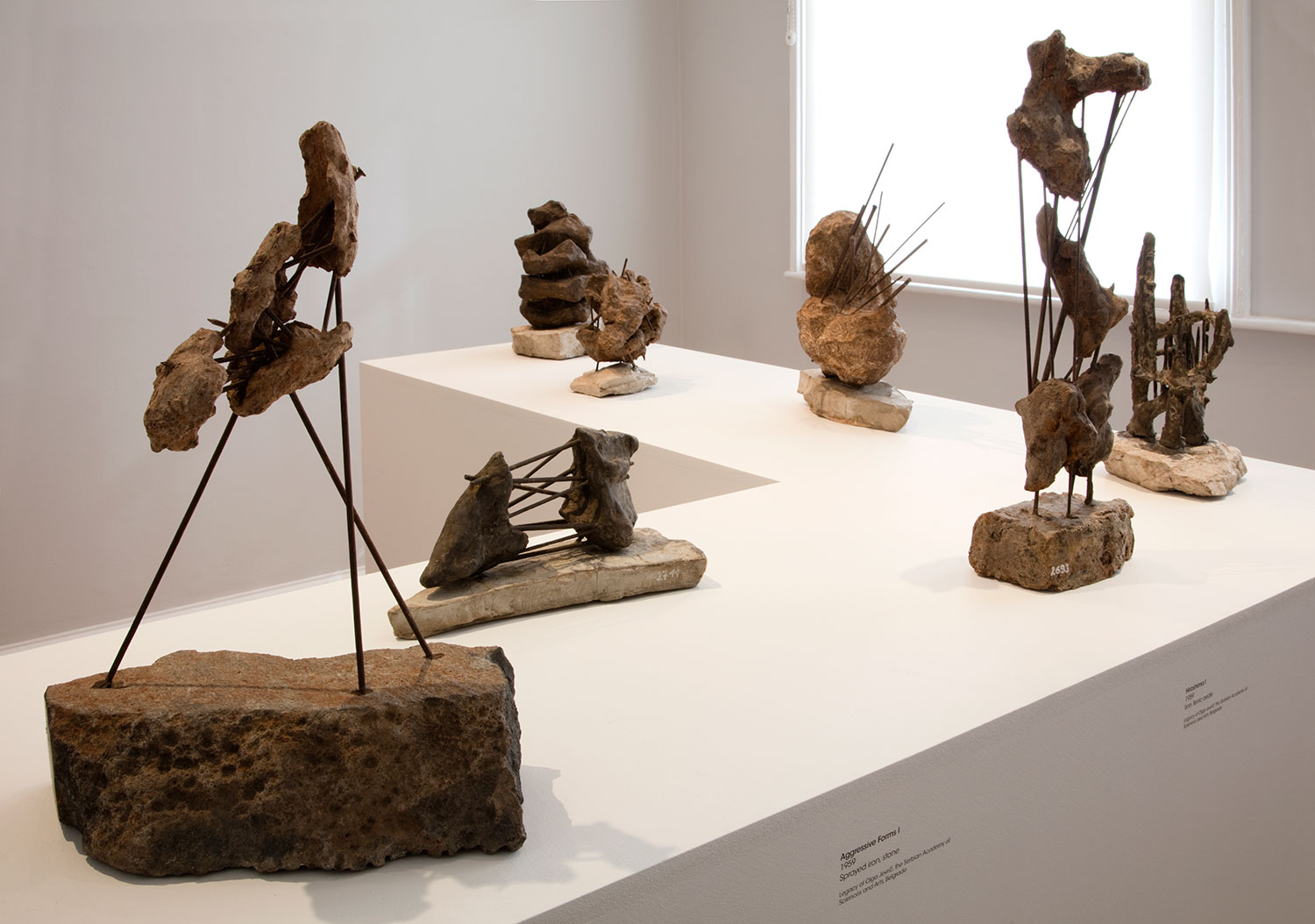 Installation view of Olga Jevrić: Proposals for Monuments 2