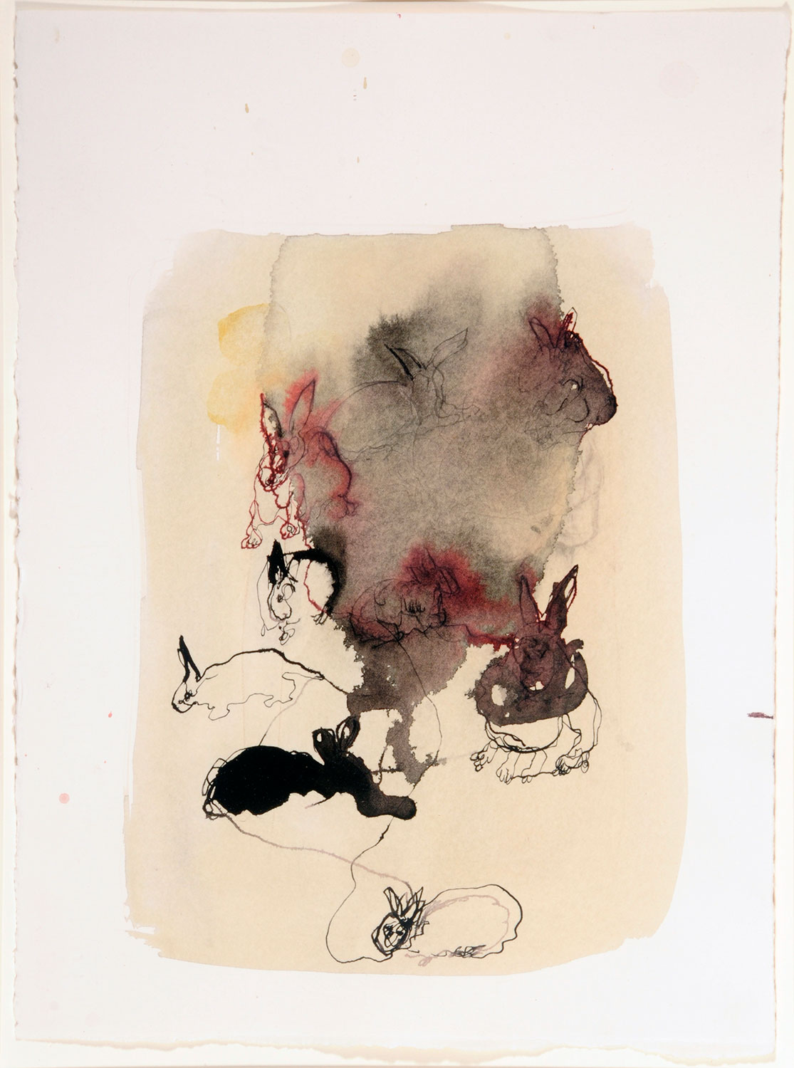 Lucia Nogueira Untitled 1989-92 (rabbits)