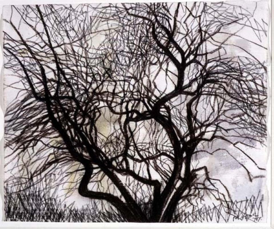 Old Apple Tree in Winter 1977 (HMF 77(38)) 241 x 290mm, charcoal, watercolour on blotting paper
