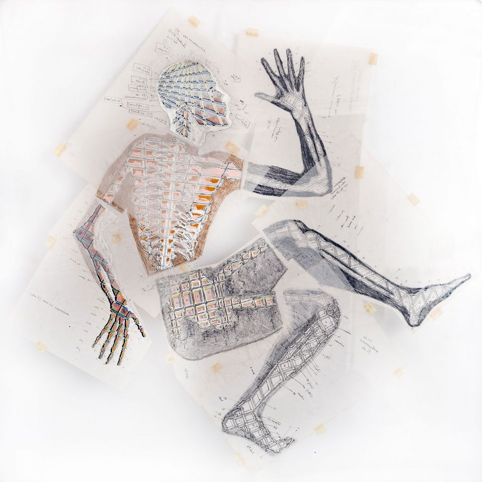 Paul Neagu, 'Anthropocosmos 457 Cells (Skeleton)' (1972-3, pencil, gouache, crayon and ink on perspex and paper)