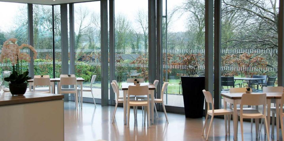 An image of the cafe, looking out onto the gardens