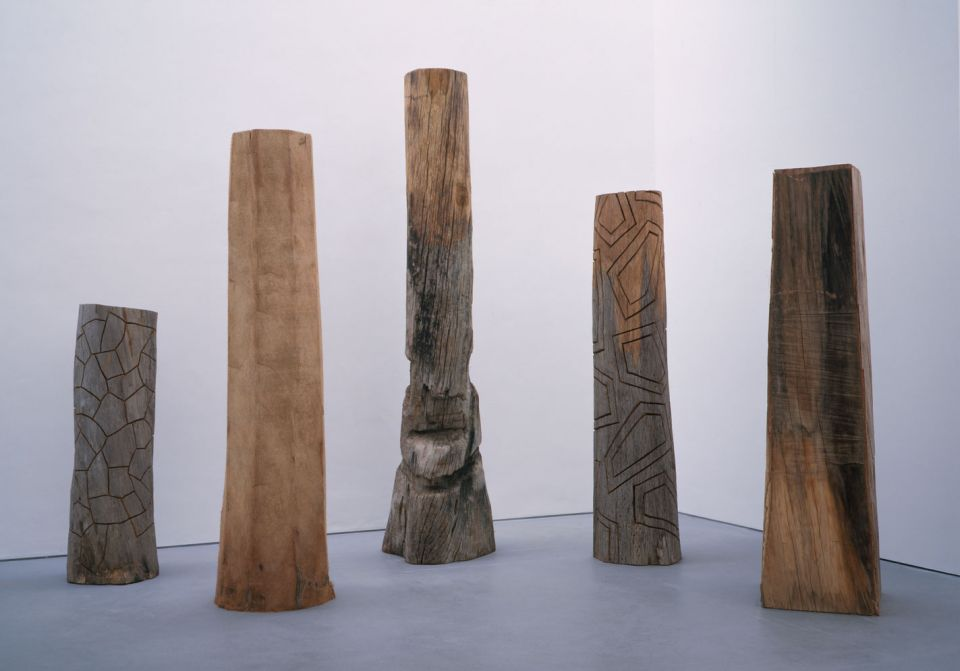 David Nash: Line of Cut 1