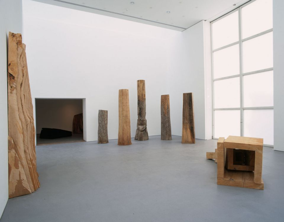 David Nash: Line of Cut 2