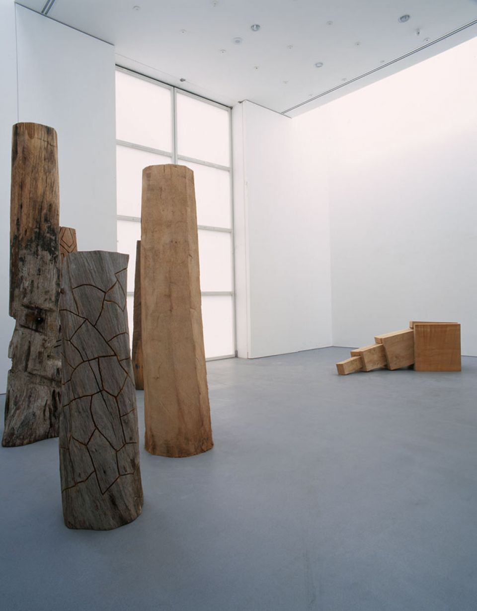 David Nash: Line of Cut 3
