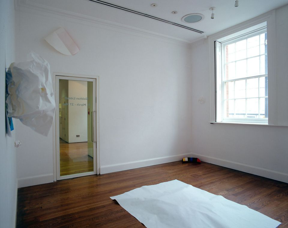 Installation view of Siobhan Liddell: Curious About Existence 3
