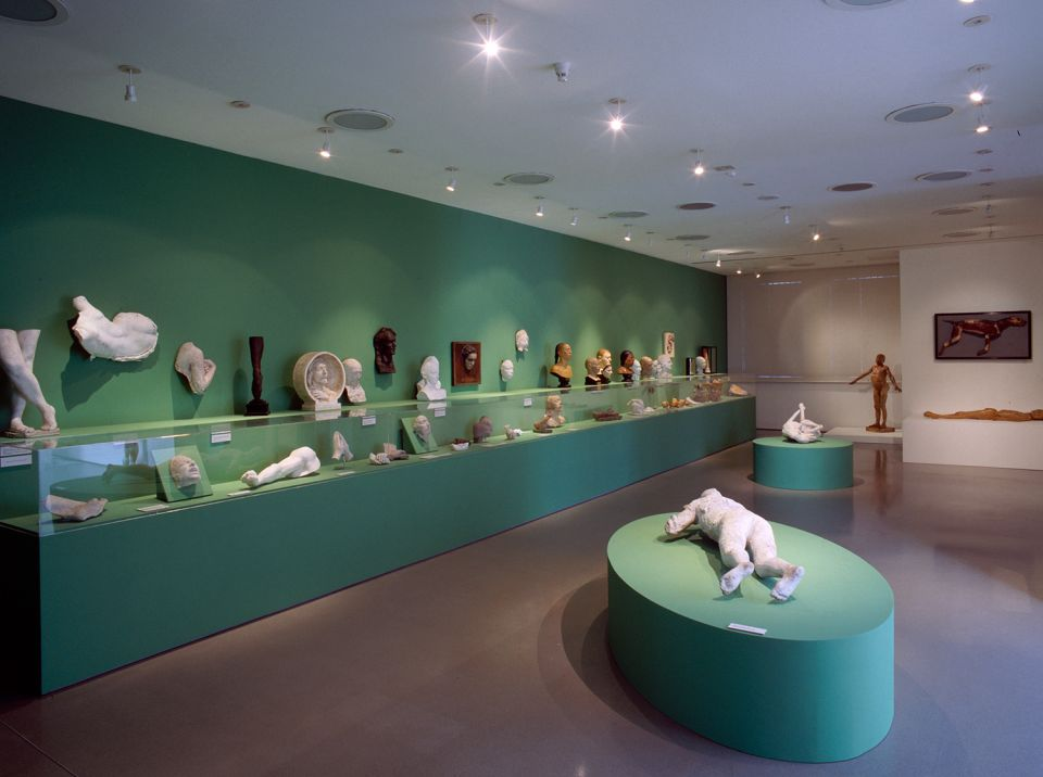 Installation view of Second Skin