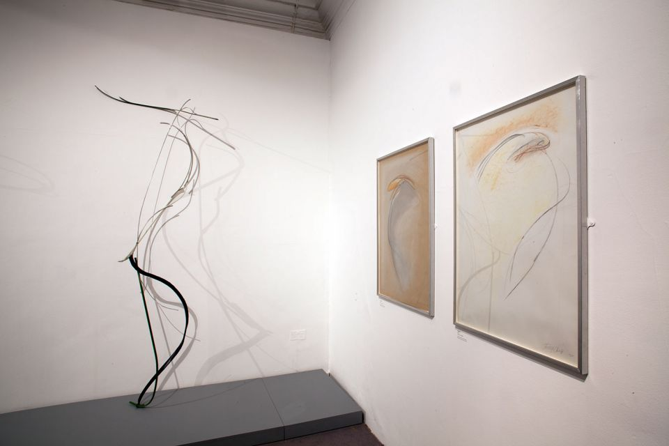Installation view of Shelagh Cluett: Drawing in Space 1