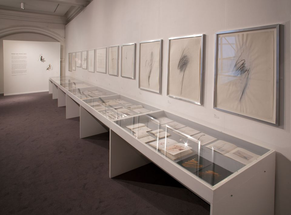Installation view of Shelagh Cluett: Drawing in Space 3