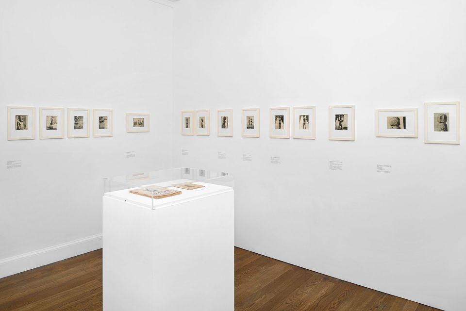 Installation view of Vladimir Markov: Displays and Fictions 2