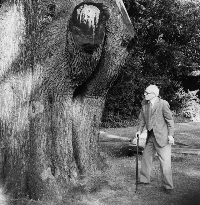 Henry Moore and the Spirit of Elmwood
